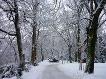 Wintermagie Lizenzfreie Stockfotografie