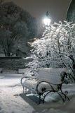Wintermagie Lizenzfreies Stockbild