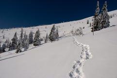 Wintermethode, die auf Hügeloberseite läuft Stockfotos