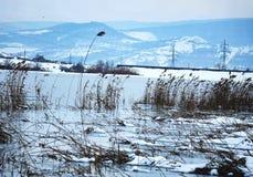 Wintermood fotos de archivo libres de regalías