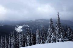 Wintermood Fotografía de archivo