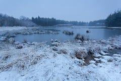 Wintermorgen auf wildem See stockfotografie
