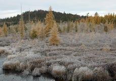 Wintermorgen in den Adirondack-Bergen Stockfotos