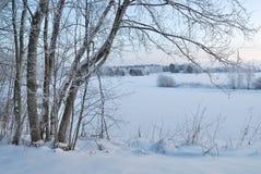 Wintermorgen in Finnland Lizenzfreie Stockfotografie