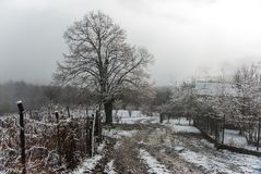 Wintermorgen im Bergdorf lizenzfreies stockbild