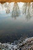 Wintermorgen im Spiegel des Flusses Stockfotografie