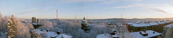 Wintermorgenpanorama Stockbild