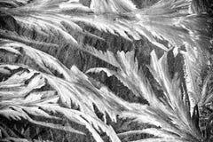 Wintermuster auf dem Fenster Lizenzfreie Stockfotos