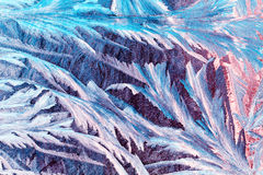Wintermuster auf dem Fenster Stockfotografie