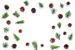 Wintermuster mit Fichtenzweig und pinecones auf weißem copyspace Draufsicht des Hintergrundes Lizenzfreie Stockfotos