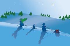 Winternacht Fotografía de archivo libre de regalías