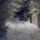 Winternacht Lizenzfreie Stockbilder
