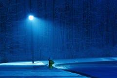Winternacht stockfotos