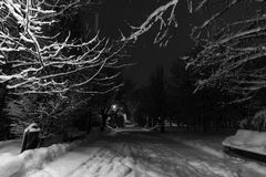 Winternacht im Park Lizenzfreie Stockbilder