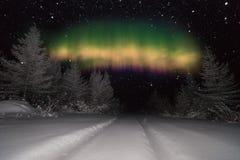 Winternachtlandschaft mit Wald, Mond und Nordlicht über dem Wald stockfotografie