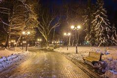 Winternachtlandschaftsbank unter Bäumen und glänzendem Straße lig Lizenzfreie Stockbilder