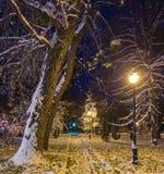Winternachtlandschaftsbank unter Bäumen und glänzendem Straße lig Lizenzfreie Stockfotografie