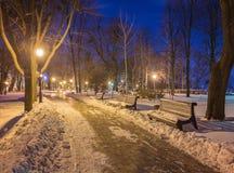 Winternachtlandschaftsbank unter Bäumen und glänzenden Straßenlaternefallenden Schneeflocken Lizenzfreies Stockbild