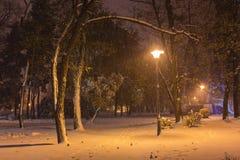Winternachtlandschaftsbank unter Bäumen und glänzenden Straßenlaternefallenden Schneeflocken Stockfotografie
