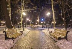 Winternachtlandschaftsbank unter Bäumen und glänzenden Straßenlaternefallenden Schneeflocken Lizenzfreies Stockfoto