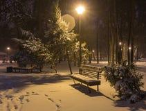 Winternachtlandschaftsbank unter Bäumen und glänzenden Straßenlaternefallenden Schneeflocken Lizenzfreie Stockfotografie