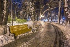 Winternachtlandschaftsbank unter Bäumen und glänzenden Straßenlaternefallenden Schneeflocken Stockfotos