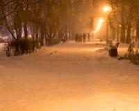 Winternachtschnee fällt in den Park Lizenzfreies Stockfoto