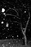 Winternachtszene Lizenzfreies Stockfoto