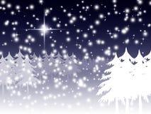 Winternachtszene Stockbild