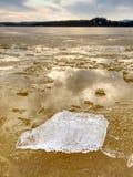 Winternaturwunder Gelbe Stücke Schnee schmelzend auf Strand Wunderbare Natur c Lizenzfreies Stockbild
