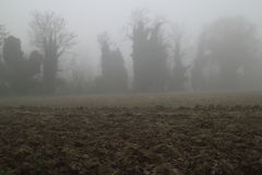 Winternebel Stockbilder