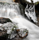 Winternebenfluß Stockbild