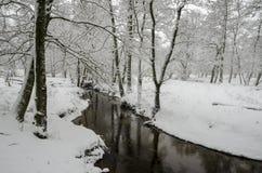 Winternebenfluß Stockfotos