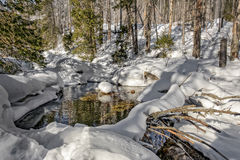 Winternebenfluß in den Bergen Stockbild