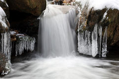 Winternebenfluß im Nationalpark Sumava Stockfotografie
