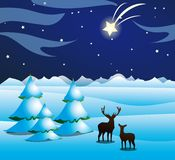 Winternight Royalty Free Stock Photography