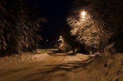 Winternight 库存图片