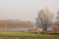 Winterpanorama Lizenzfreie Stockfotografie