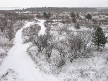 Winterpanorama der Natur Stockfotos