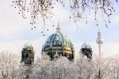 Winterpanorama von Berlin Dom Stockbilder
