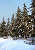 Winterpark stockfotografie