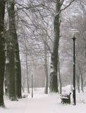 Winterpark Lizenzfreies Stockbild