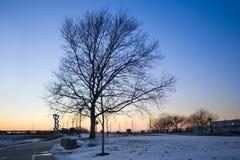 Winterpark Stockbild
