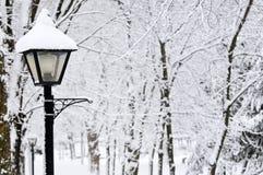 Winterpark Lizenzfreie Stockbilder