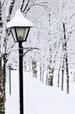 Winterpark Lizenzfreies Stockfoto