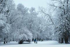 Winterpark abgedeckt mit Schnee Stockfotos