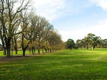 Winterpark in der Stadt Stockbild
