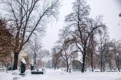 Winterpark in der Stadt Stockfoto
