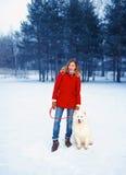 Winterpark, hübsche Frau mit Samoyedhund Stockfoto