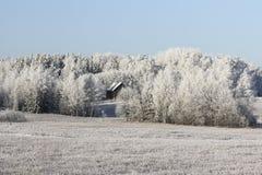 Winterpark im Schnee am frühen Morgen Lizenzfreie Stockfotos